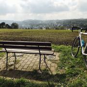 Stevens Cyclocross Prestige